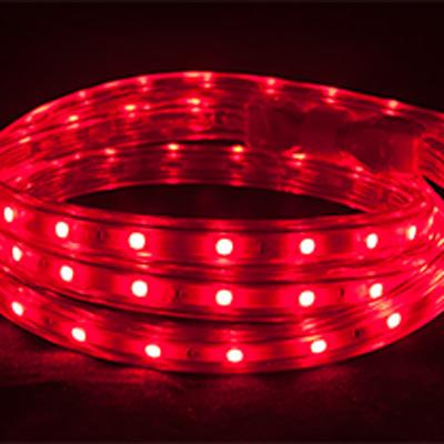 buy popular 3de50 9cf15 150ft Reel - POLAR RGB Color Changing Tape/Rope Light Hybrid Reel - 120V